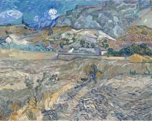 Печать на холсте Enclosed Field with Peasant (also known as Landscape at Saint-Remy), 1889